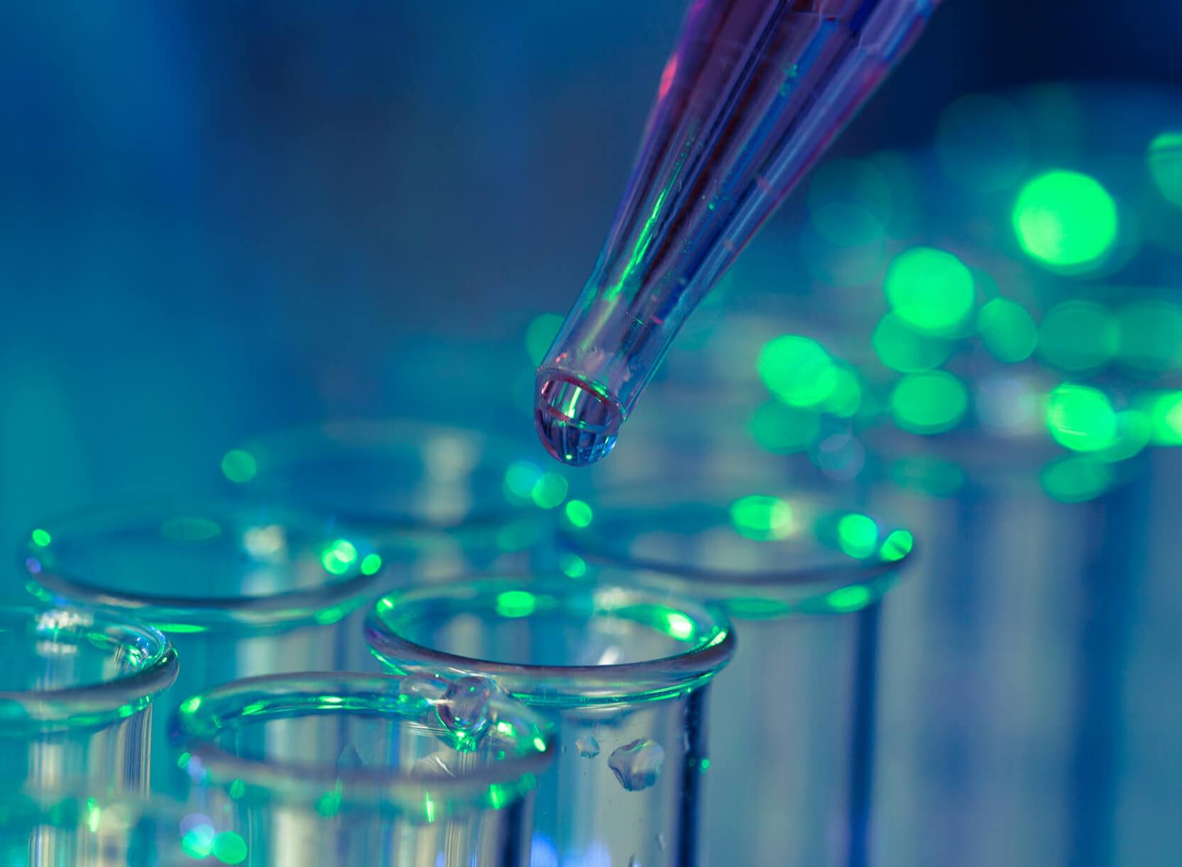 Immunologia, anticorpi e test immunologici: cosa sono?